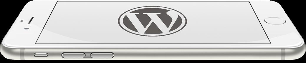 web_bg